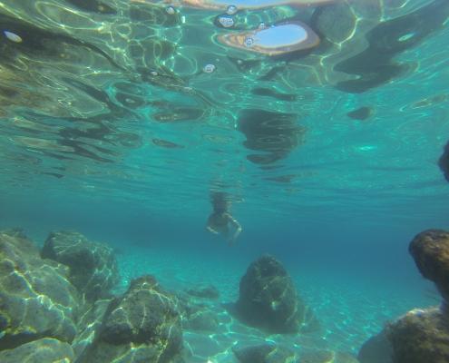 Free Diving Cruise
