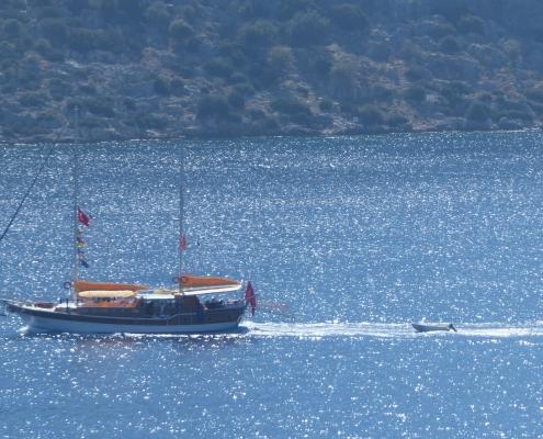 Sail,Cheers Yachting