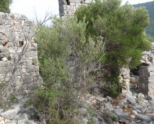 Lycian way,Kekova
